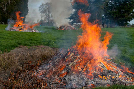 Multiple burn piles  getting rid of the rubbish and garden cuttings on the paddock at the farm