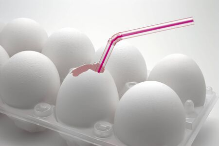 White eggs in plastic box Stock Photo - 5719953