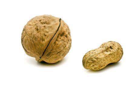 groundnut: walnut and groundnut
