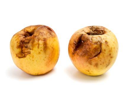 rotten apples Stock Photo - 6600293