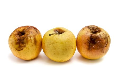 rotten apples Stock Photo - 6600276