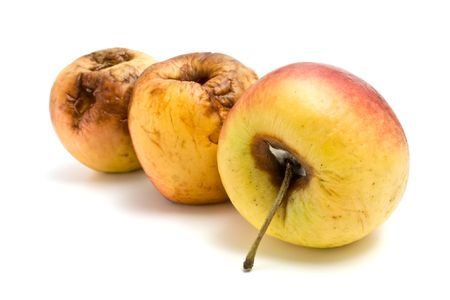 rotten fruit: rotten apples Stock Photo