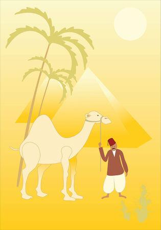 convoy: camel Illustration