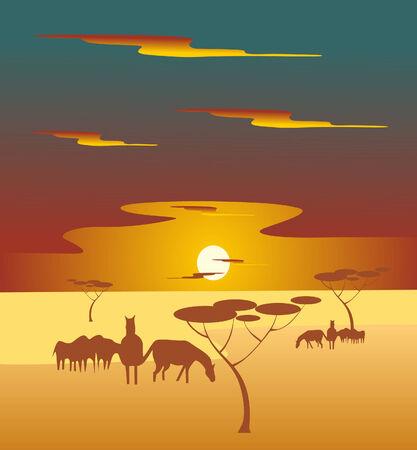 africa sundown Vector