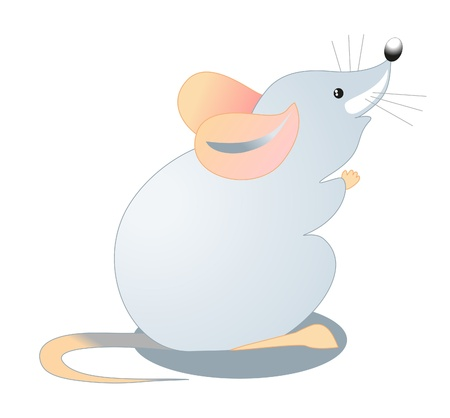 small gray mouse Vector