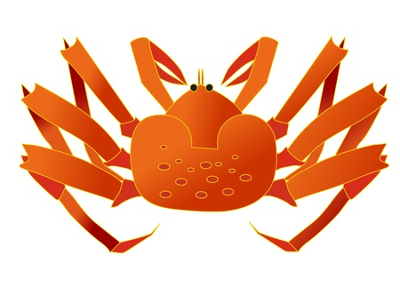 red crab on white background Vector