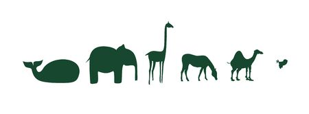 cartoon camel: African animasl on a white background Illustration