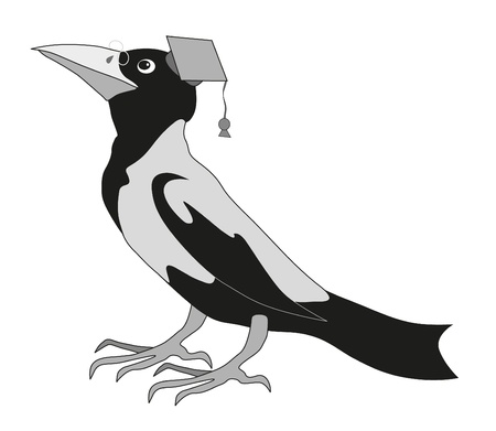 magpie: cute raven on white background Illustration