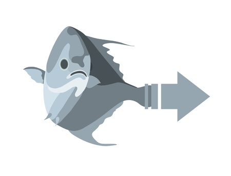 fish isolated Stock Vector - 8377143