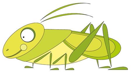 Cartoon illustration - green grasshopper Vector