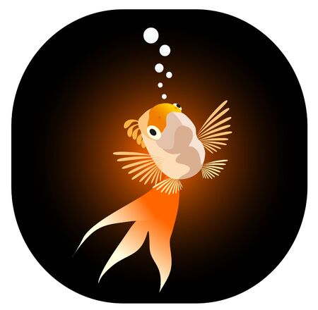 vector illustration: goldfish Stock Vector - 10102207