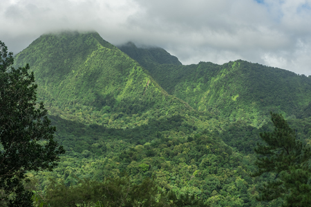 Mount Pelee Volcano and the jungle of Martinique Stock Photo