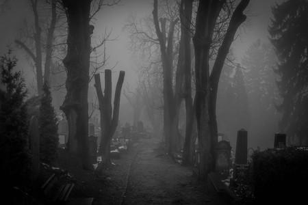 Fog in the creepy graveyard of Sighisoara, Romania