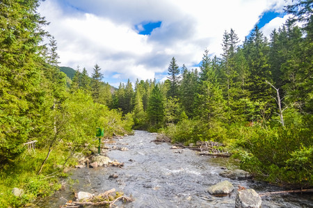 River in the Tatra Mountains, Poland