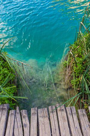 Water from a wooden boardwalk