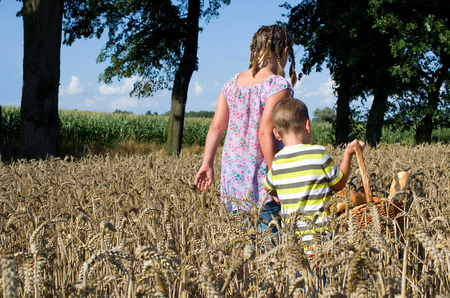 siblings with a basket of bread going through a field of corn photo