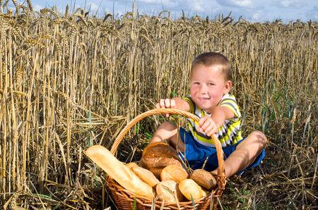 little boy with a basket of bread in a cornfield photo