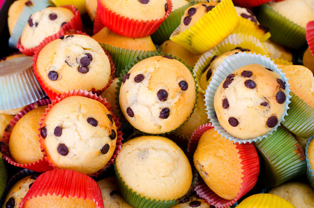 Many muffins with chocolate chips photo
