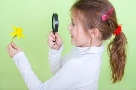 Junges Mädchen nimmt eine Narzisse unter dem Mikroskop Standard-Bild - 35372923