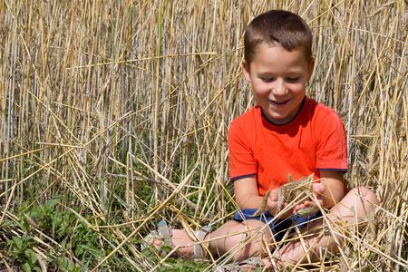 food stuff: Little happy boy sits in the cornfield Stock Photo