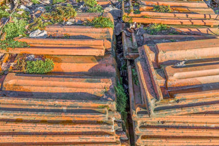 superseded: Old stacked roofing tiles with moss over rampantly grows