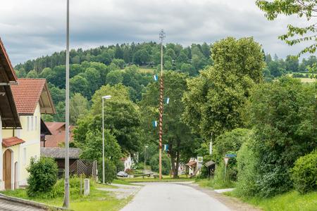 Maypole in Grueb, a small village near grafenau in the bavarian forest