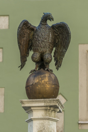 nobleness: Closeup of the Eagle jumping in Regensburg at the cathedral square
