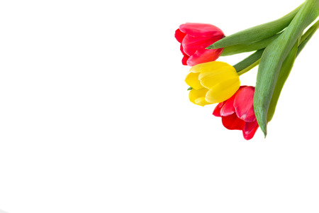 Bouquet of red and yellow tulips Stock Photo