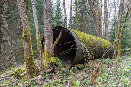 One single old rusty iron tube from a water pipeline in a forest