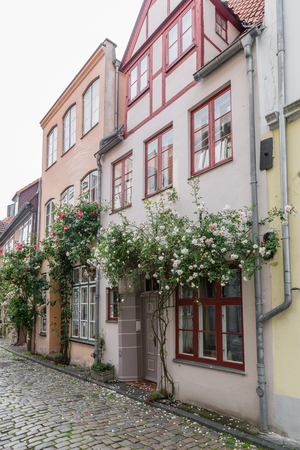 Beautiful old houses in Luebeck decorated with rose flower Imagens