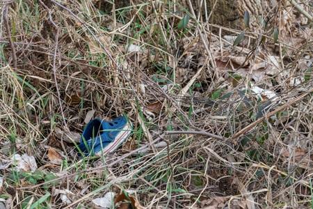 Single blue children sandal thrown away in high grass