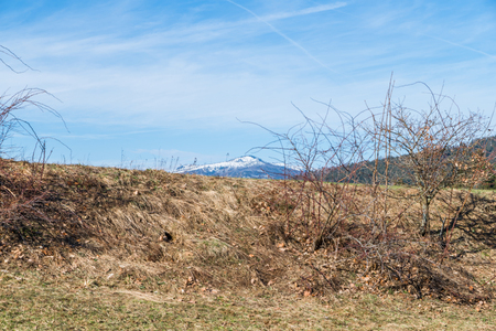 View of the snow-covered mountain Rachel at the Bavarian Forest in spring, Germany Stockfoto