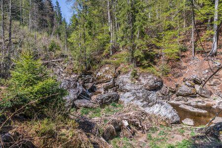 Steinklamm in Spiegelau in the Bavarian Forest, Germany