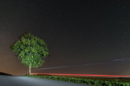 Starry sky in summer with a tree lit up with traces of light on a street, Germany