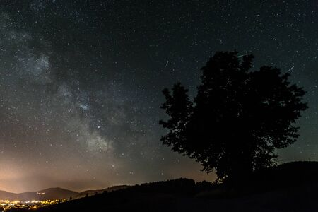 Starry sky with the Milky Way galaxy in summer with a tree in front of an illuminated city, Germany Фото со стока