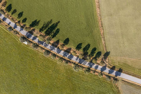 Picture of an aerial view of a street with avenue and fields meadows and fields in the Bavarian Forest, Germany