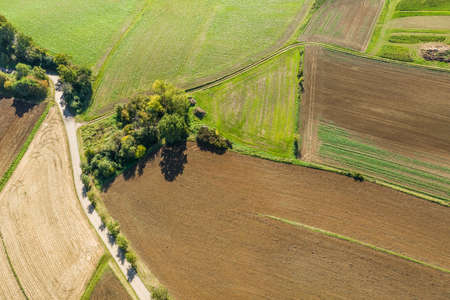 Picture of an aerial view of meadows and fields of a rural area with dirt road and trees and arable land in Bavaria, Germany