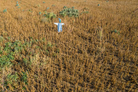 Picture of a self-made scarecrow on a field in Bavaria, Germany