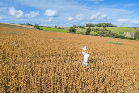 Picture of a self-made scarecrow on a field in Bavaria, Germany 免版税图像 - 159014847