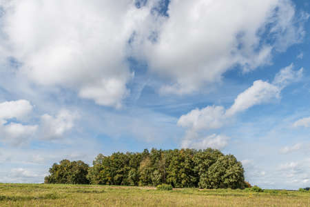 Image of a group of trees on a meadow with sky and clouds in the background of a rural area in Bavaria, Germany