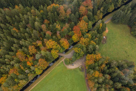 Image of an aerial view of trees of a forest from above on the tree tops in the Bavarian Forest, Germany 免版税图像