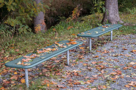 Metal park bench in autumn with wilted leaves in a park for taking a break and relaxing at a lake in November, Germany