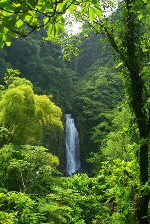 trafalgar: Trafalgar Waterfall in Dominica, Caribbean