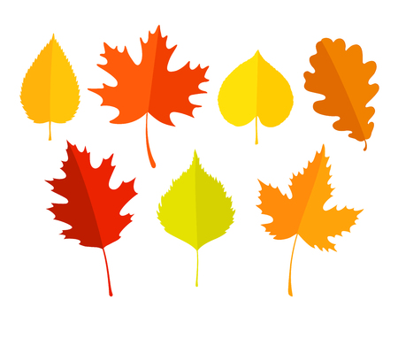 Set of colorful autumn leaves on white background. Ilustracja