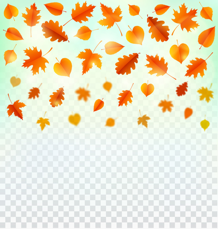 Autumn background with leaves. Zdjęcie Seryjne
