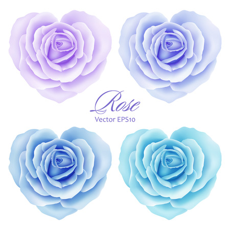 Roses flowers in heart shape. Vector illustration