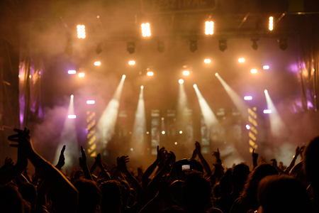 perform: Photo of concert crowd in front of bright stage lights, detail