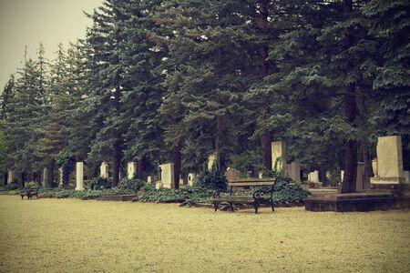 headstones: Headstones in cemetery, vintage view