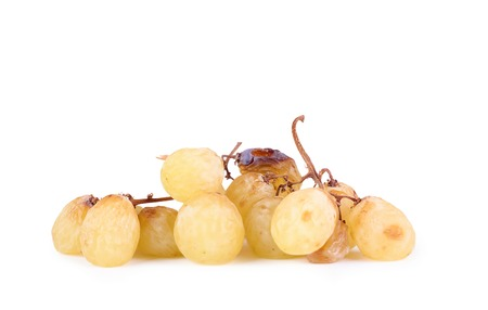 overripe: A bunch of overripe grapes isolated on white background