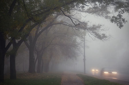 Fog in the city an autumn day